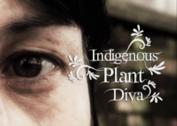 "Picture from Video ""Indigenous Plant Diva"" by Kamala Todd"